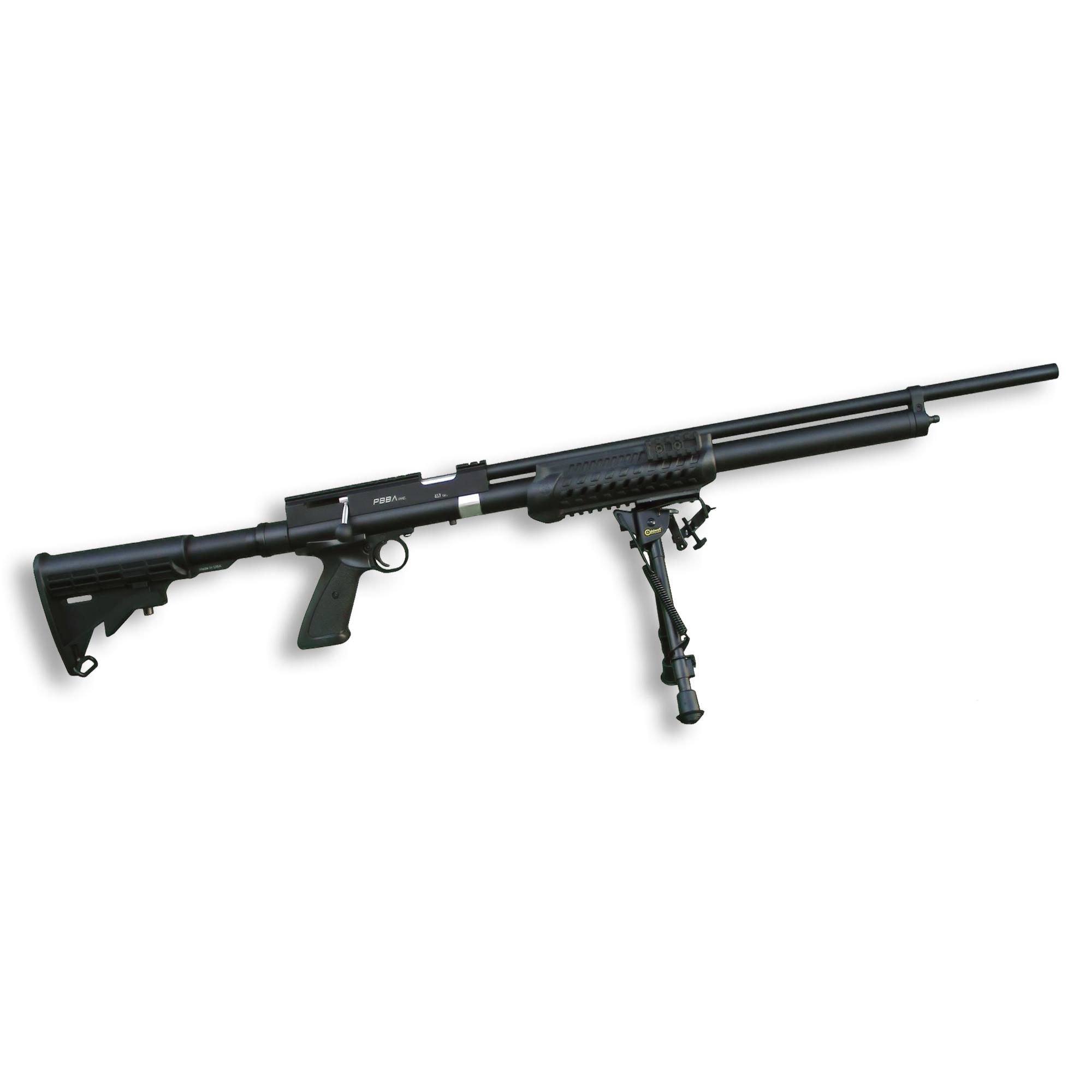 Pro AR Air Rifle